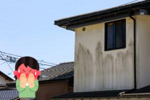 外壁の汚れ対策